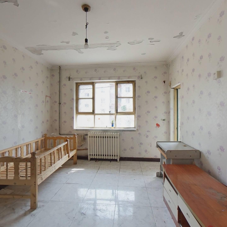 教工楼 1室1厅 南